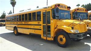 Our new buses
